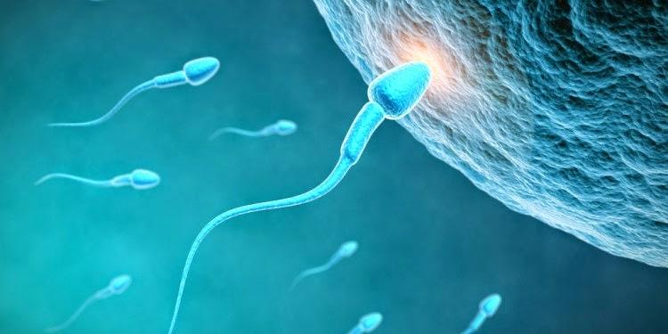 Merancang Kehamilan Menurut Islam