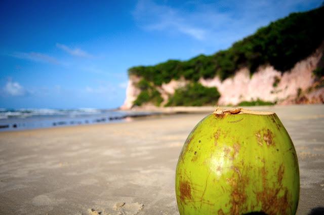 Brasil, natal, rn, praia, pipa, férias, verão, flor do caribe, viagem, turismo, nikon, d5000