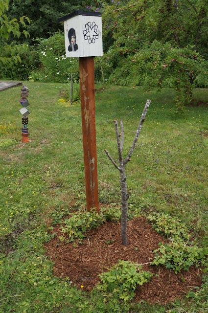 Remains of a dead Frost peach tree and birdhouse (and garden totem)