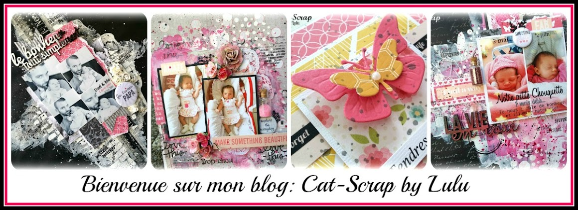 Cat-Scrap