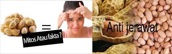 Makan Kacang Bukan Penyebab Jerawat dan Cara Memeranginya