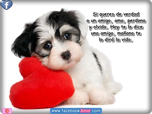 Postales Hermosas De Amor Facebook Imagenes De Amor Facebook