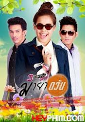 Hoa Hướng Dương – Thái Lan