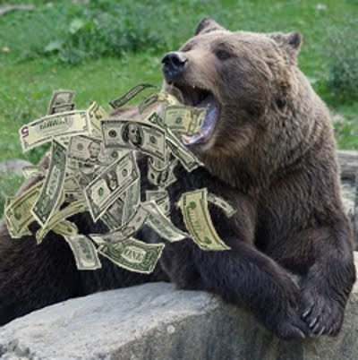 The Center Bear welcomes you and your money to this blog