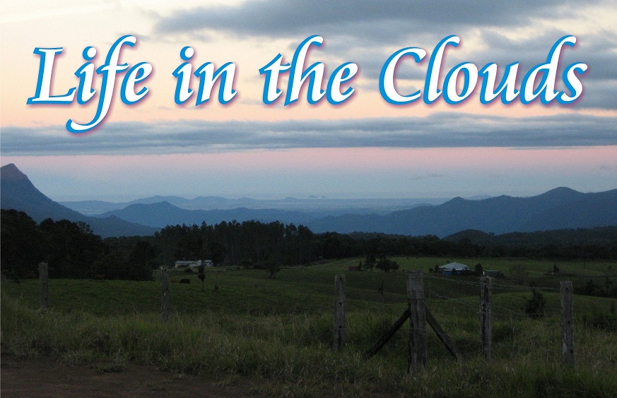 Life in the clouds