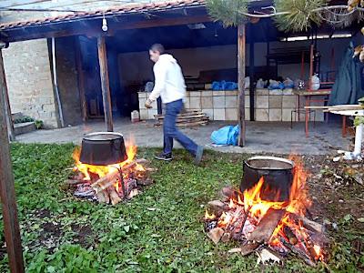 Γουρουνοχαρά, Λάγκα