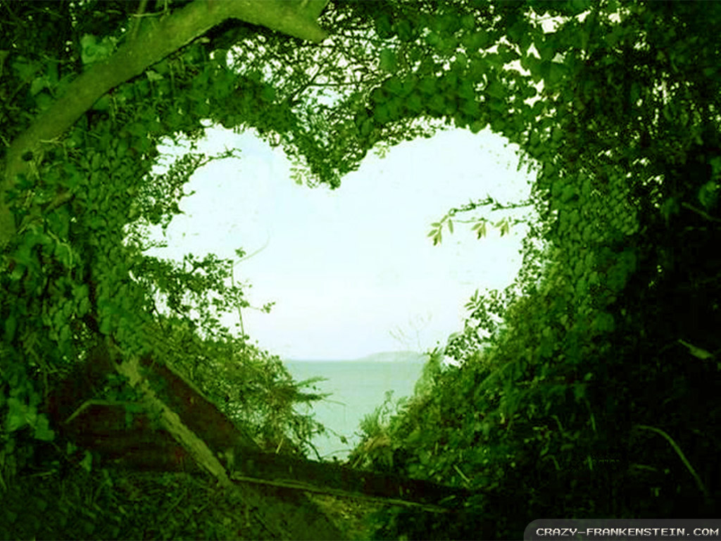 Nature Backgrounds Beautiful Love Nature Wallpapers For FreeJpg