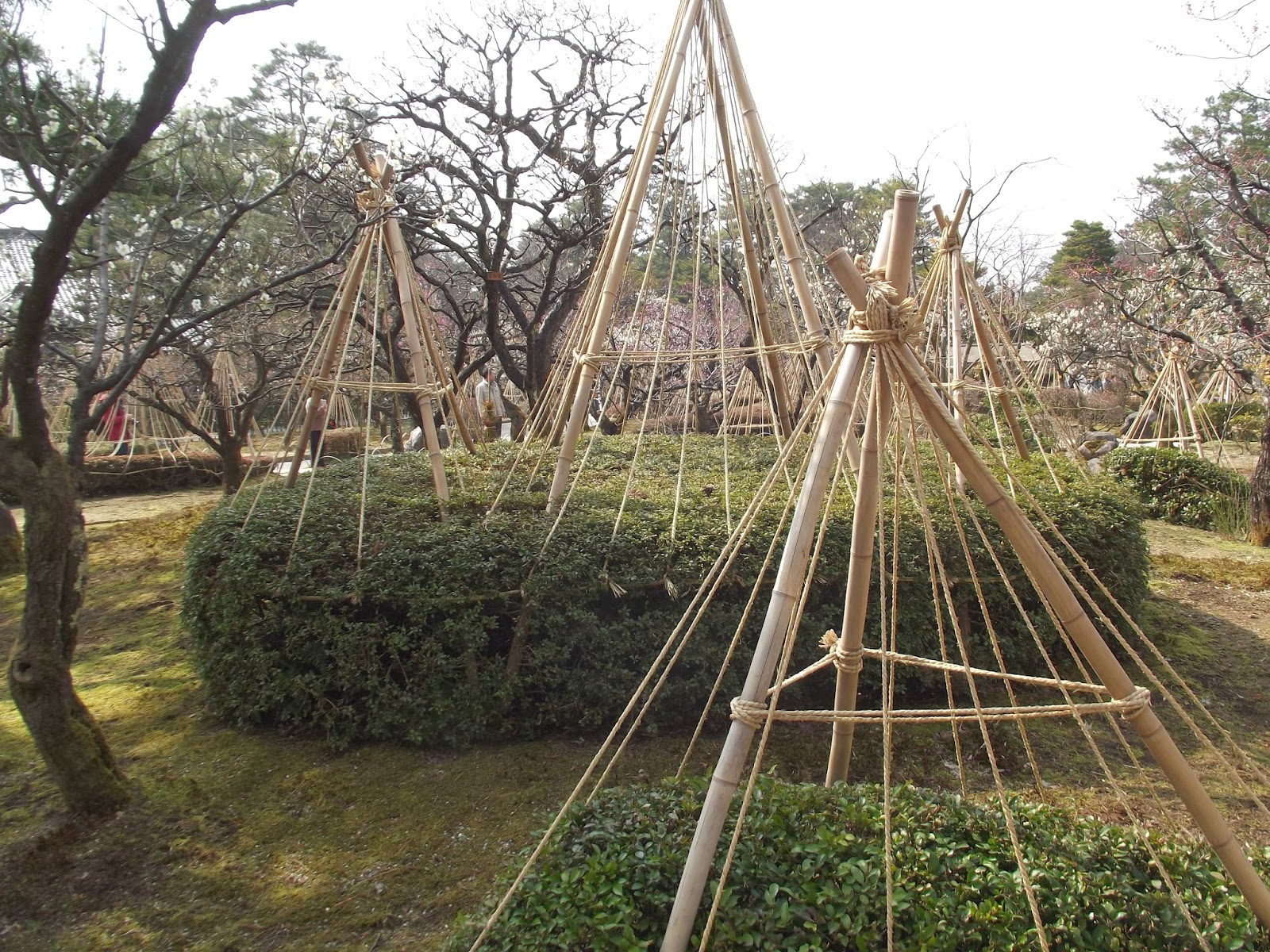 Japanese Garden Structures