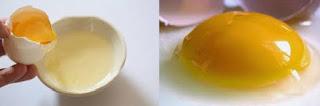 ما هي فوائد شرب البيض النيئ ؟