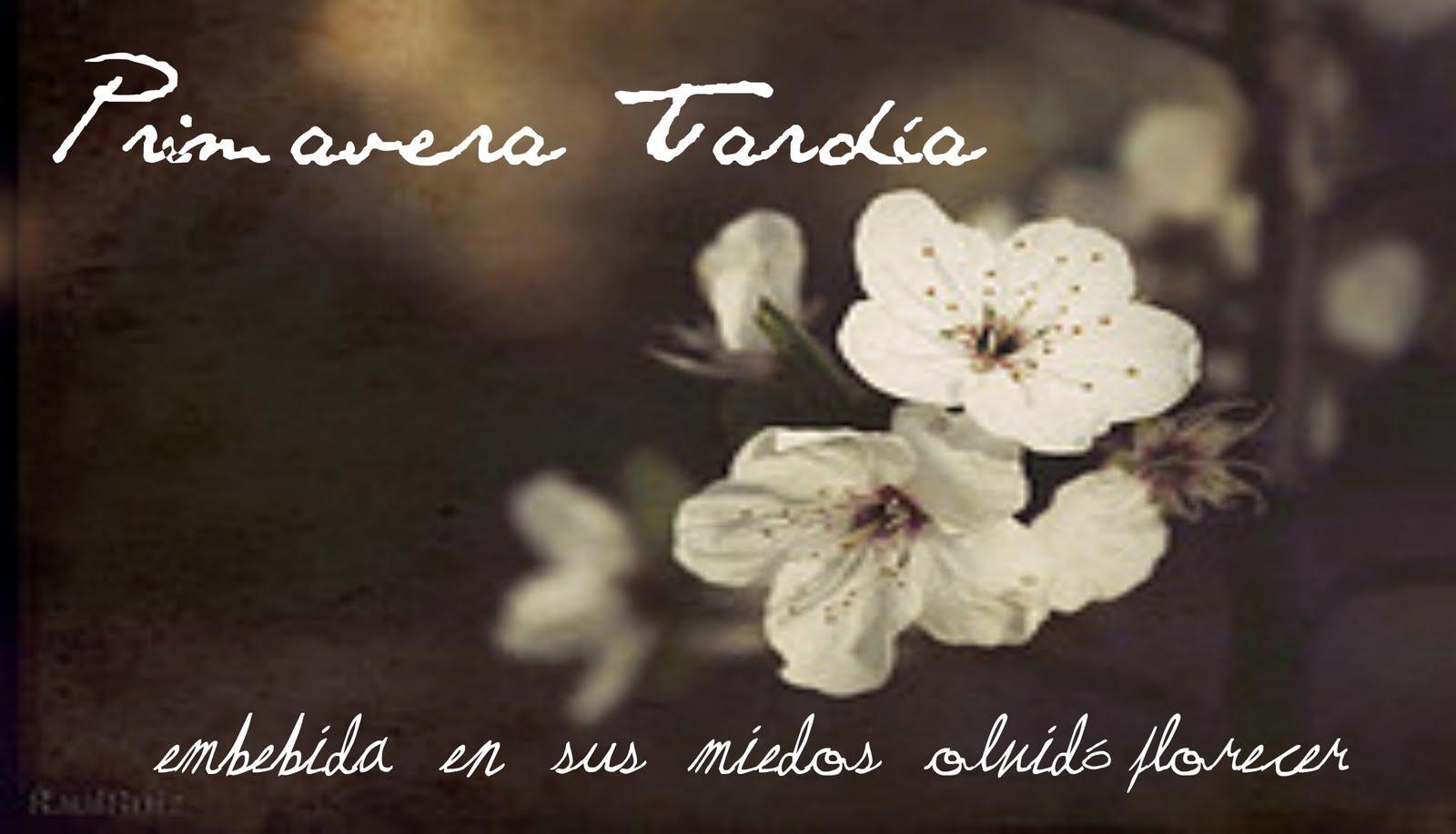 Primavera Tardía