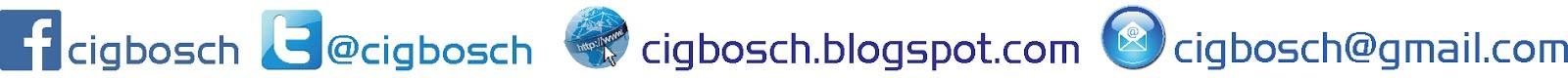 CIG Bosch