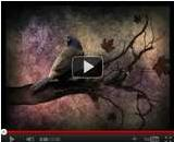 Chant d'Automne. Video