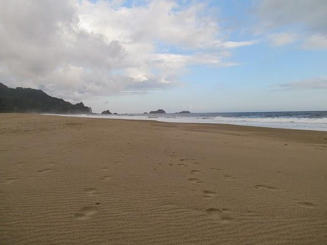 Pantai Sukamade, Taman Nasional Meru Betiri, Banyuwangi.