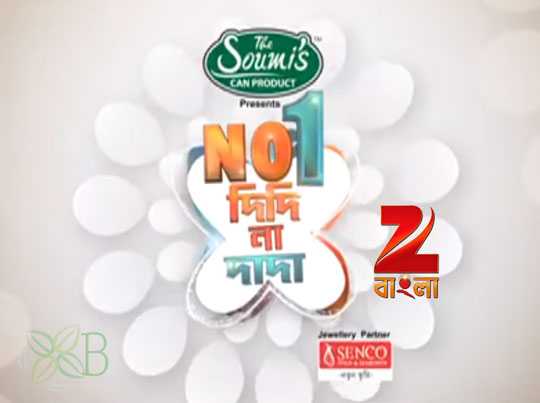NO. 1 DIDI NA DADA, Zee Bangla, TV Shows