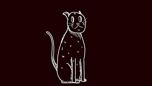 Я все понял, я же кот