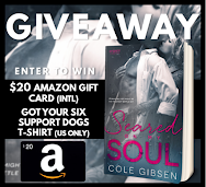 Seared on My Soul Tour & Giveaway