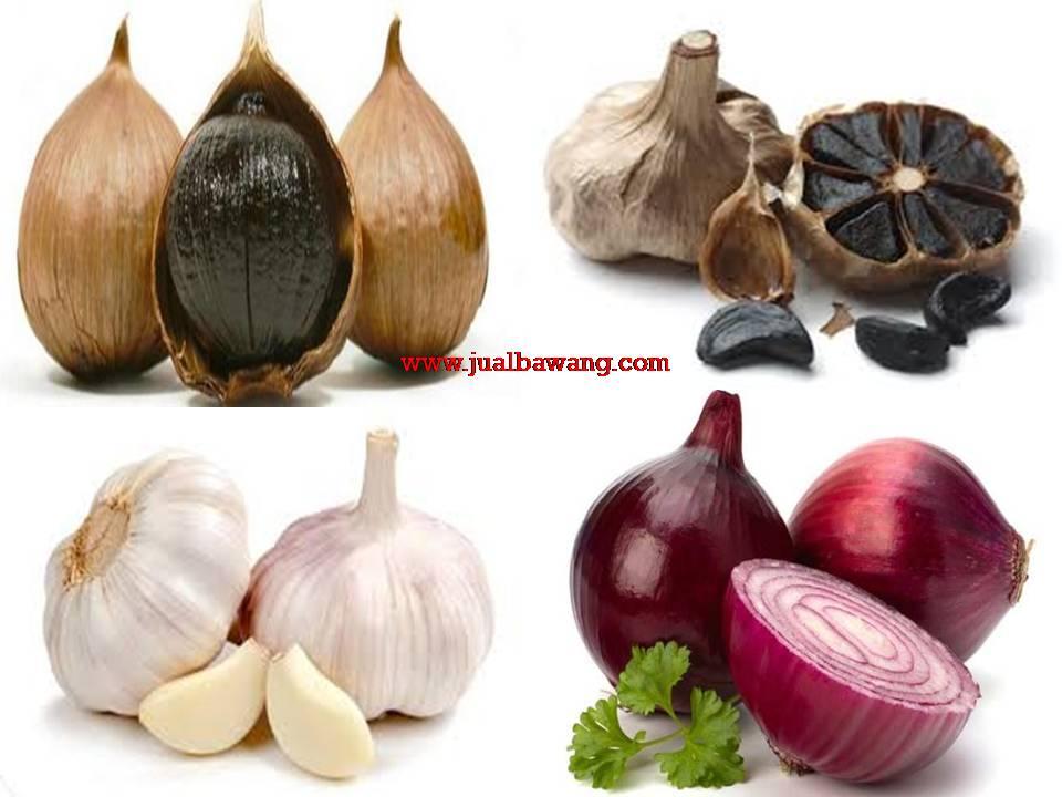 Jual | Suplier | Distributor | Harga Bawang Putih,Bawang Merah Dan Bawang Hitam
