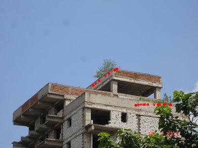 terase verzi la Craiova