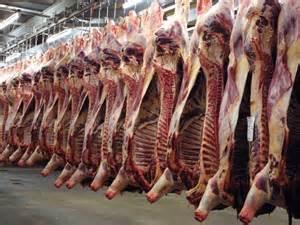 Crise de l'élevage français