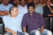 Aha Kalyanam Audio Release function Photos-thumbnail-6