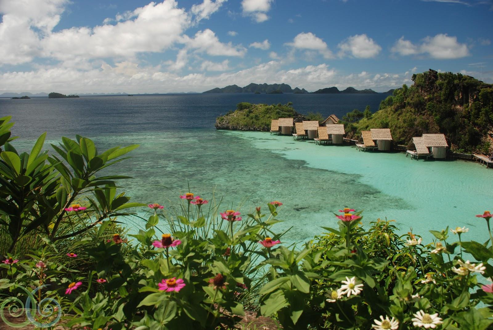 Travel trip journey raja ampat islands - Dive resort raja ampat ...