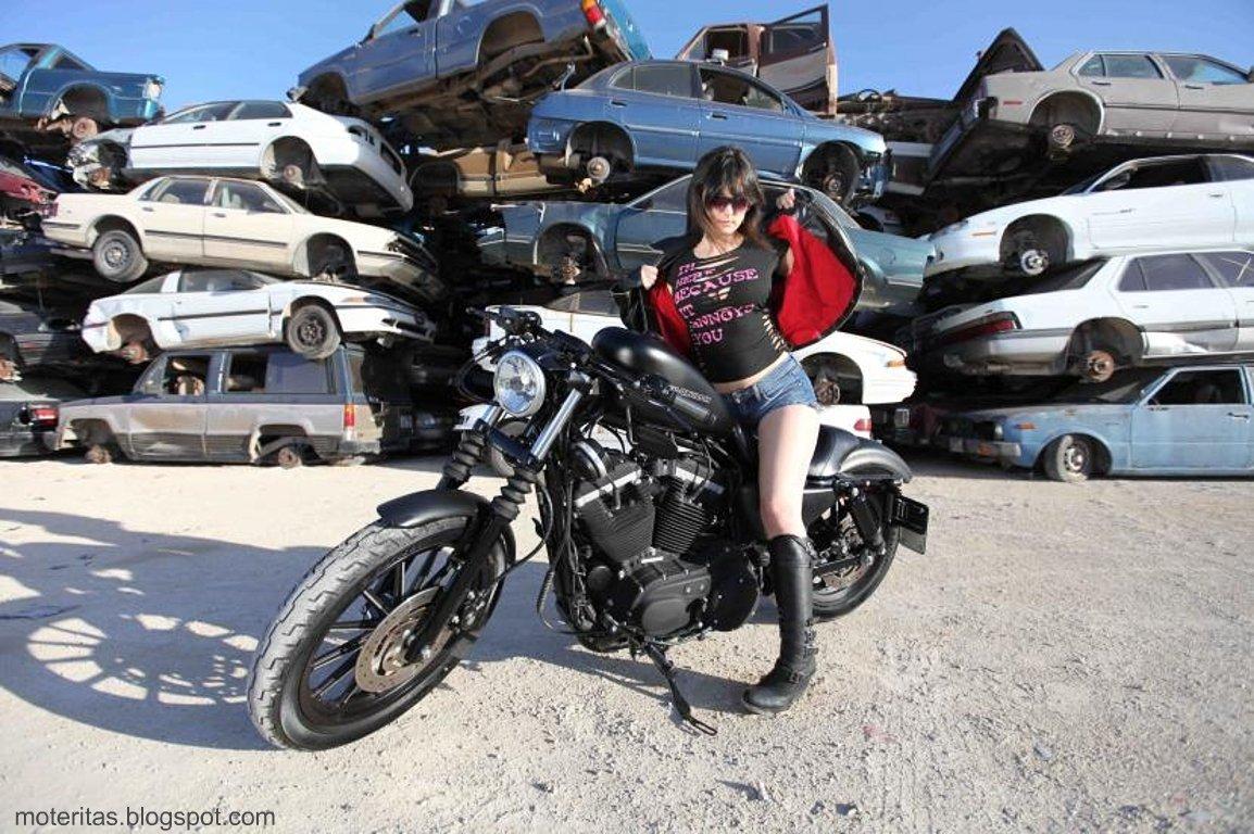 William B. Davidson HD Wallpapers Motos y mujeres resolucin HD Harley Davidson negro mate