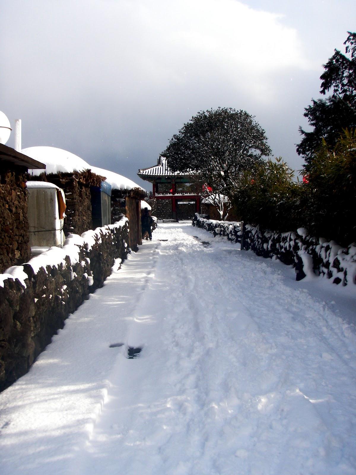 Jeju Island Winter Weather