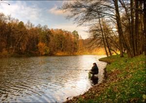 Прогноз погоды и клева для рыбалки