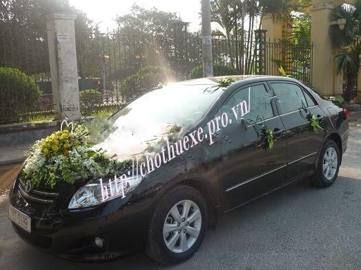 Cho thuê xe cưới Toyota Altis giá rẻ tại Đức Vinh
