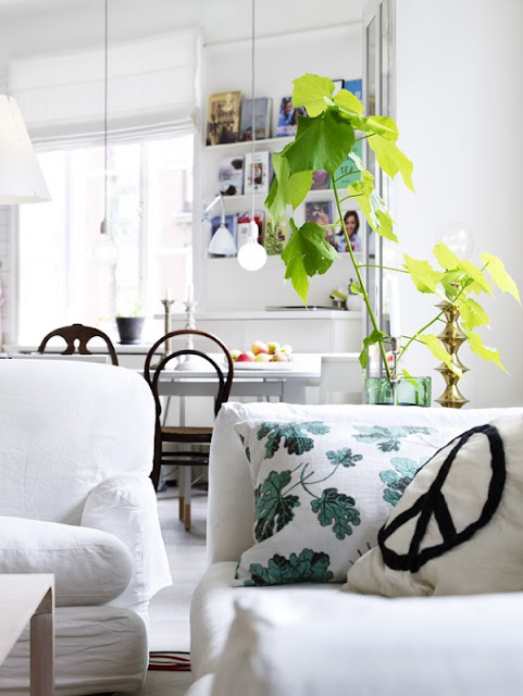 Blanc-bois-vert-noir