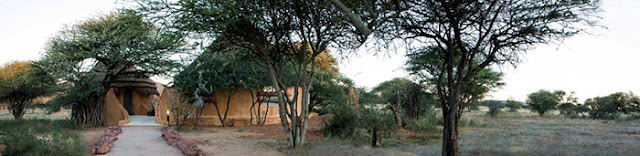 Okonjima Namibia