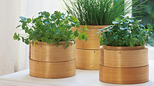 Amazing Bamboo Craft Ideas For Home Decor