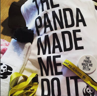 The panda made me do it, running the cardiff half for WWF