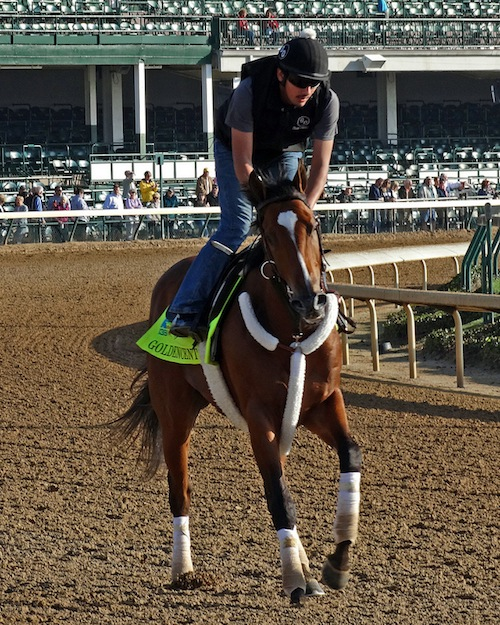 Goldencents racehorse