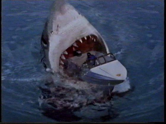 Megalodon Sa3 Maior Megalodon tubarão no mundo
