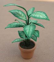 Plante,Miniature