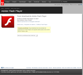 flashplayer11beta2.02.png