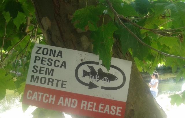 Zona de Pesca sem Morte
