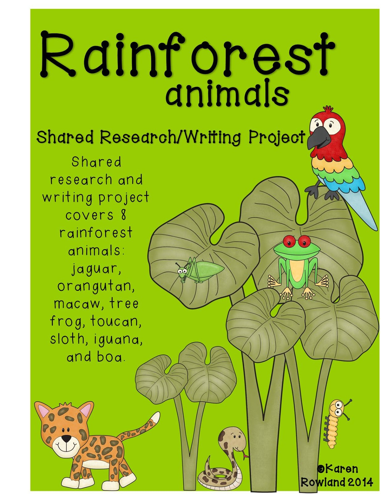 Adventures With Firsties Rainforest Animals Shared