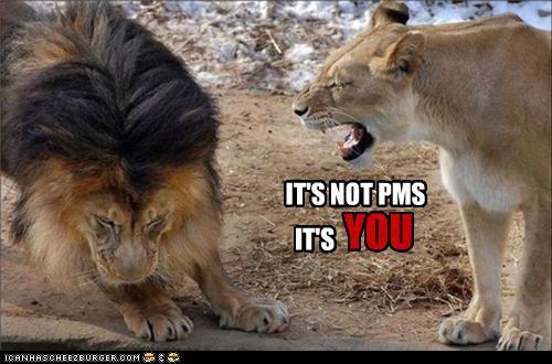 pms%2Blion.jpg