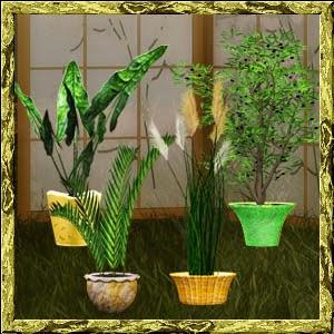 http://2.bp.blogspot.com/-JhNZwlyIrRE/VLxpz0P8JaI/AAAAAAAADDc/AcBm2FCRiec/s1600/Mgtcs__Corner_Plants_2014.jpg