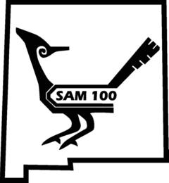 SAM 100