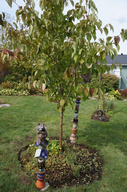 Davidii involucrata (dove) tree with handmade ceramic totems and succulent underplanting.