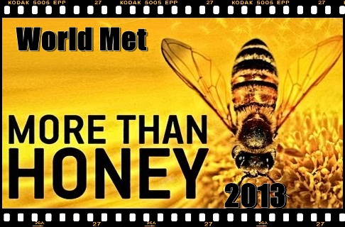 more-than-honey_movie-wm-thumb.jpg