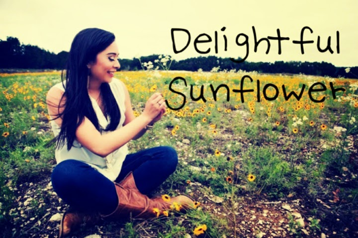 Delightful Sunflower