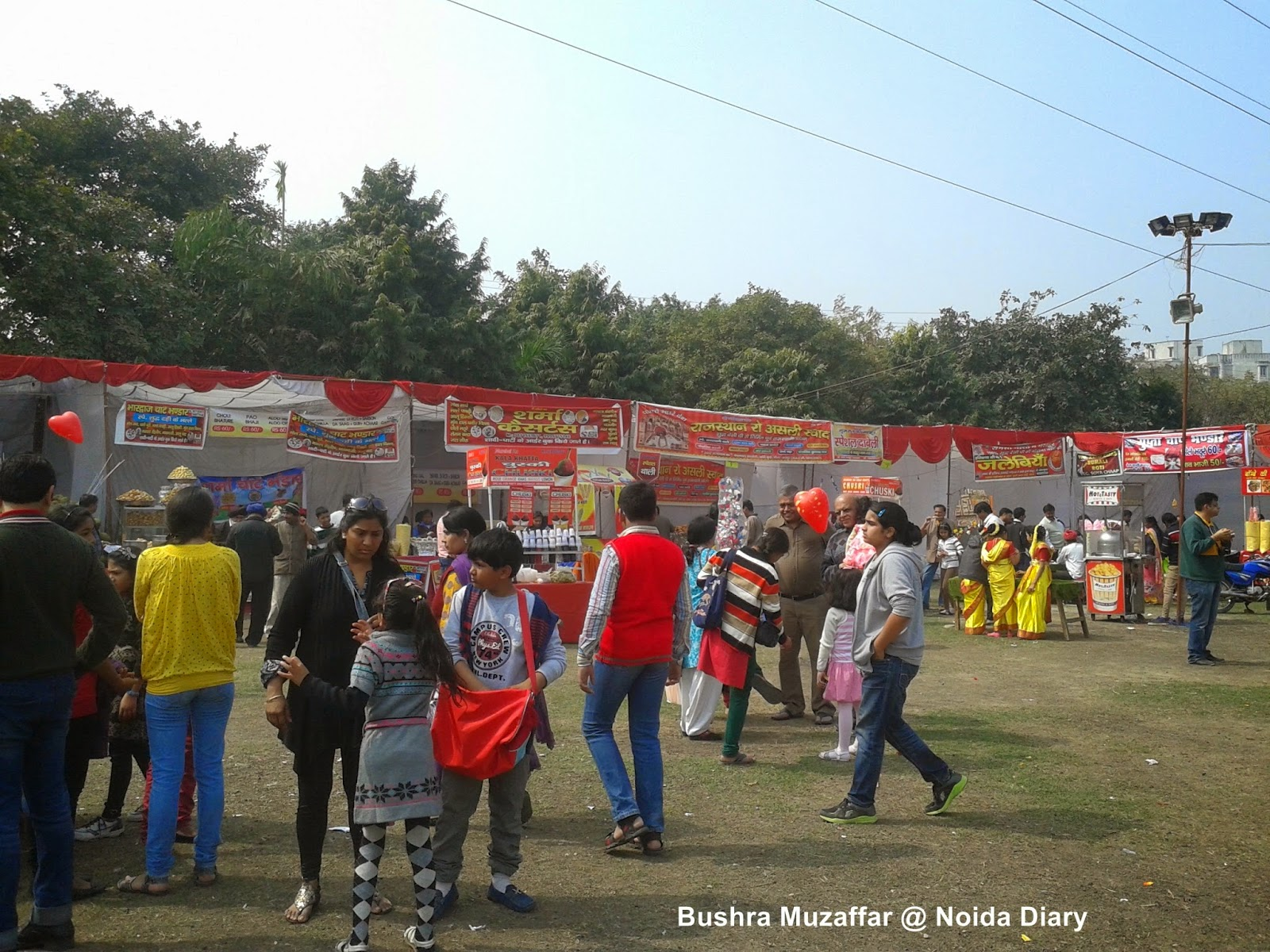 Food Court at Noida Flower Show 2014