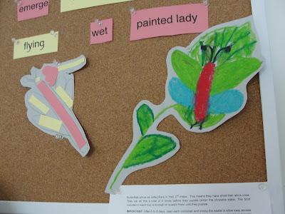 kids drawings of butterflies