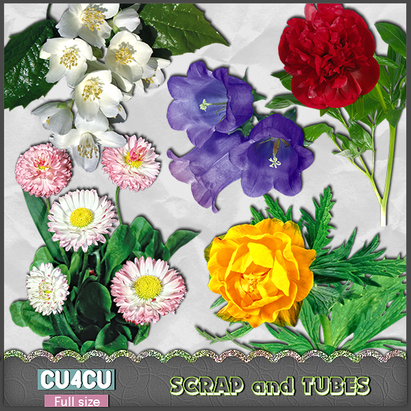 Real Flowers 1 (CU4CU) .Real+Flowers+1_Preview_Scrap+and+Tubes