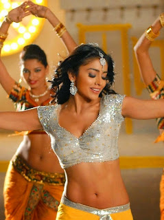 Shreya Navel Photo