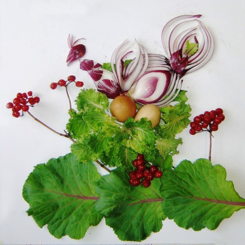beautiful onion painting